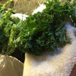 PARMEGIANO KALE SNACK -the ultimate keto chips/crisp
